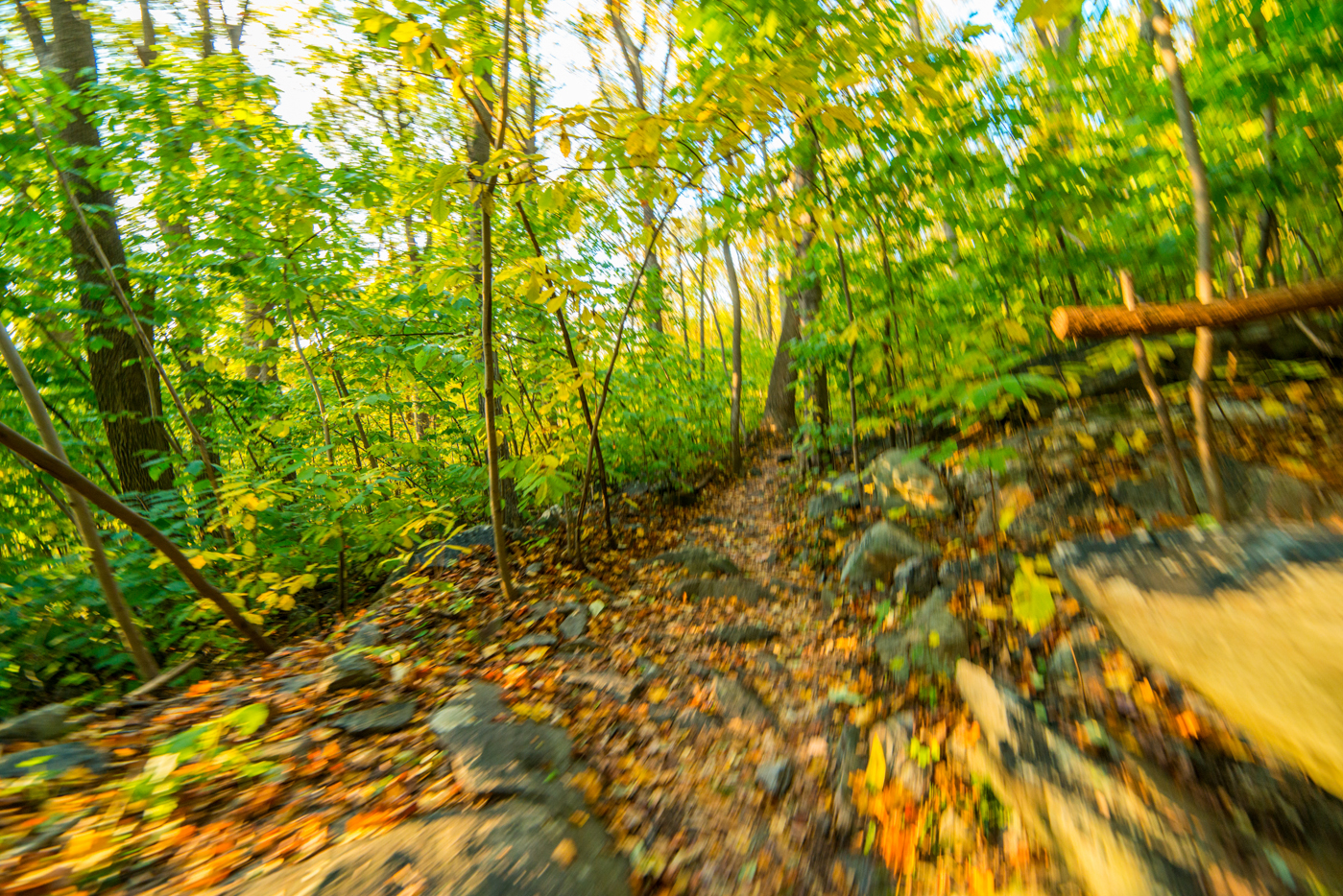 2014-10-25 WevertonCliffs_16.37.59.jpg