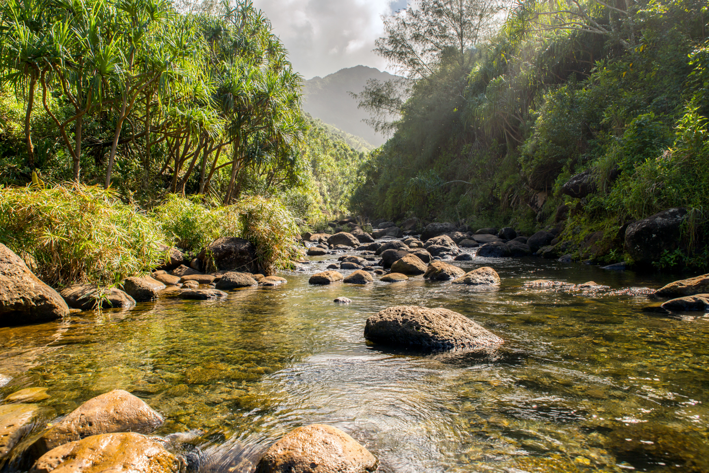Hanakapai'ai Stream on the Kalalau Trail
