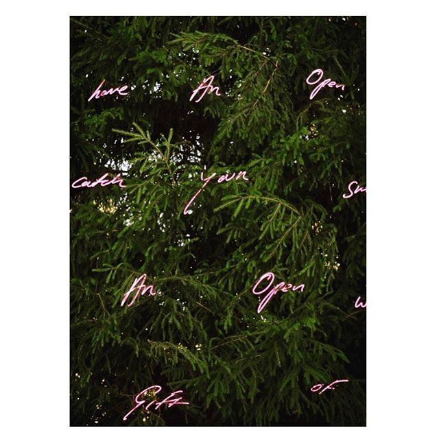 When Tracey does #christmas 💅🏻 ...🎄#traceyemin