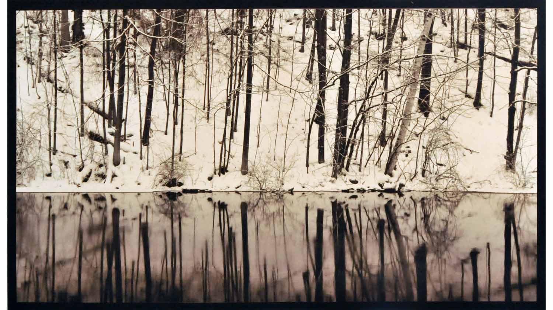 Stillness_Alabahari.jpg