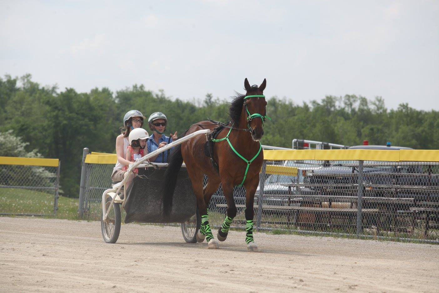 Photo courtesy of   Grand River Raceway  and  Hands on Horses