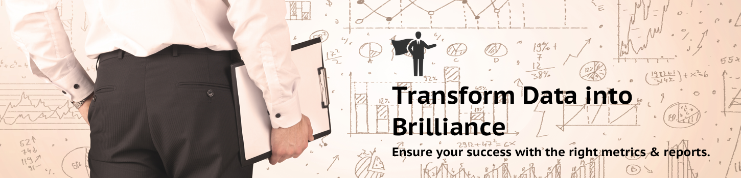 Transform Data into Brilliance