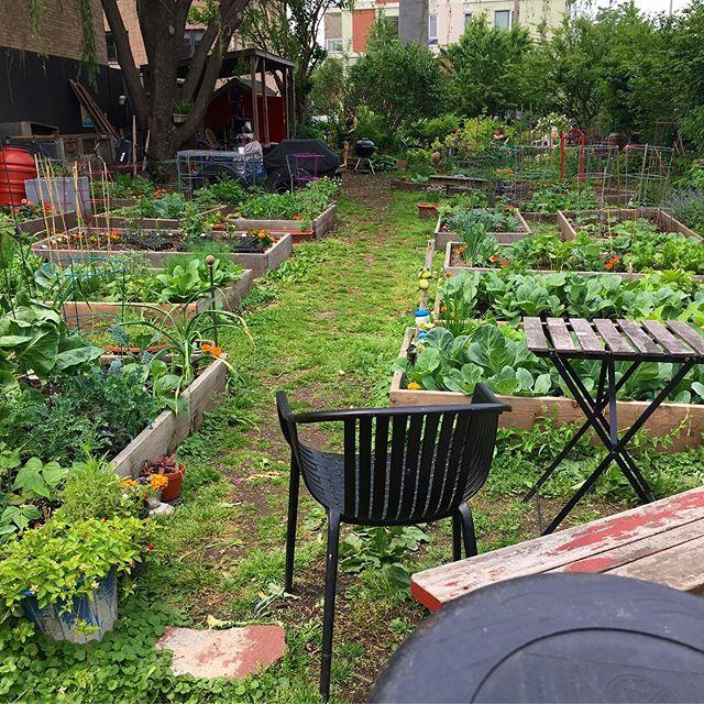 Garden day 🌱🌹
