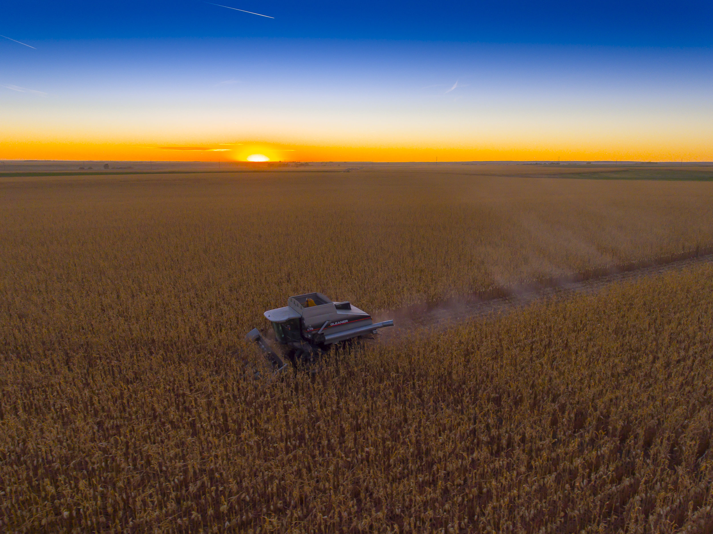 10 sunset corn harvestColorado_Fall_Harvest-4.jpg