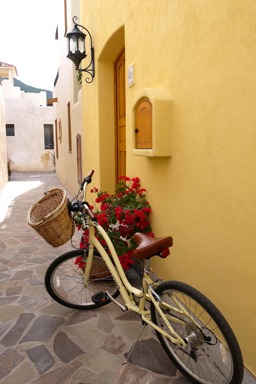 Loreto vacation bike.jpg