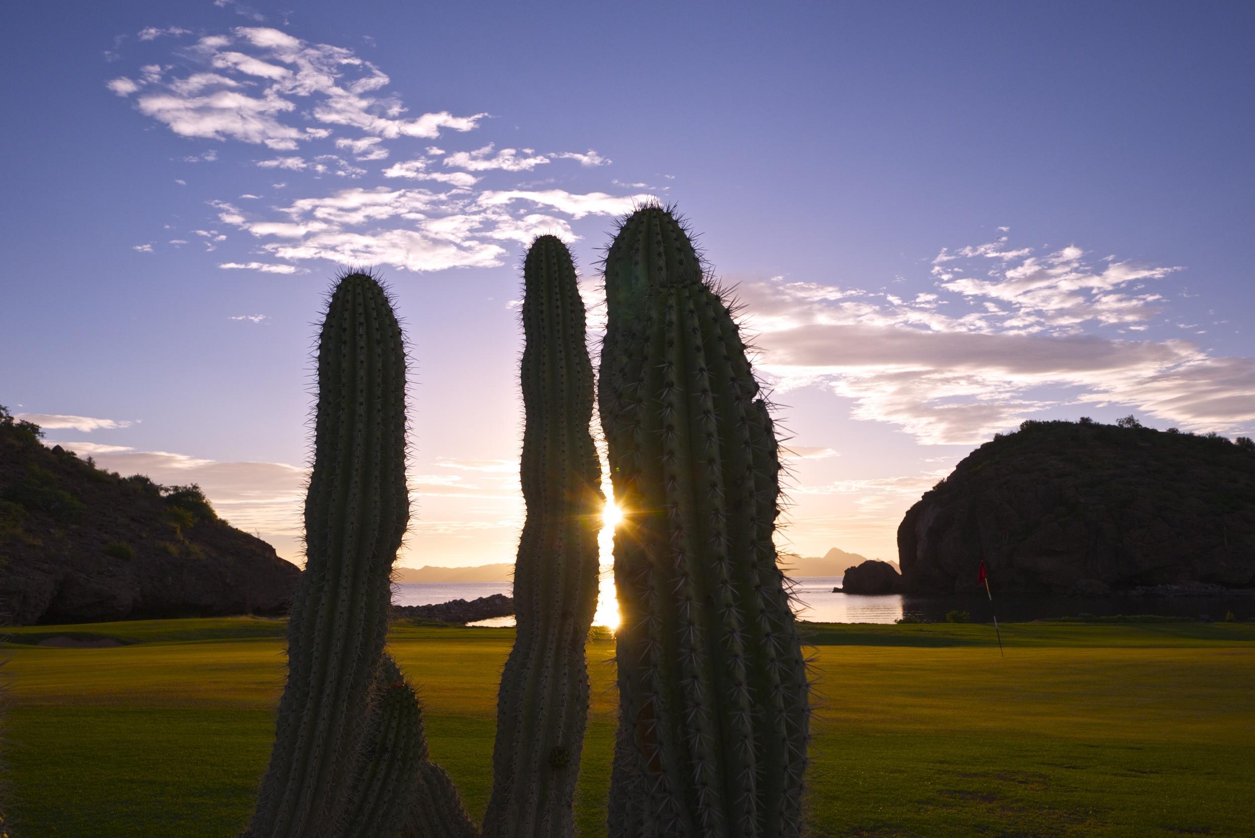 loreto bay golf course sunrise.jpg