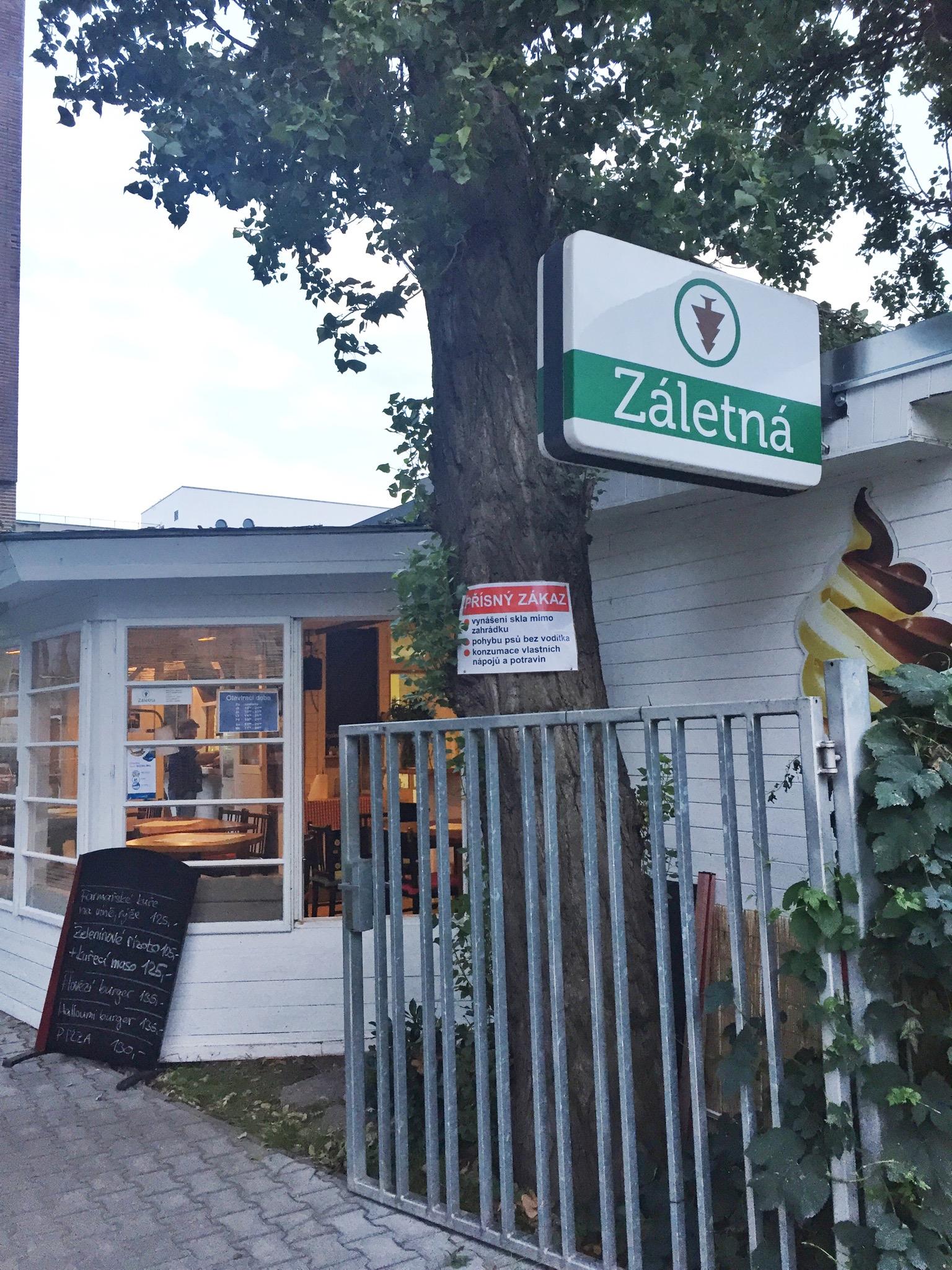 Zaletna - August Discovery - Urban Kristy