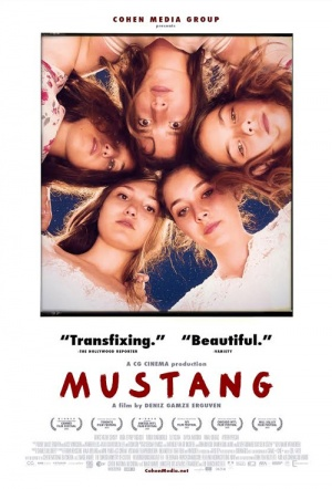 Mustang movie