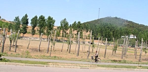 countryside-beyond-pyongyang.jpg