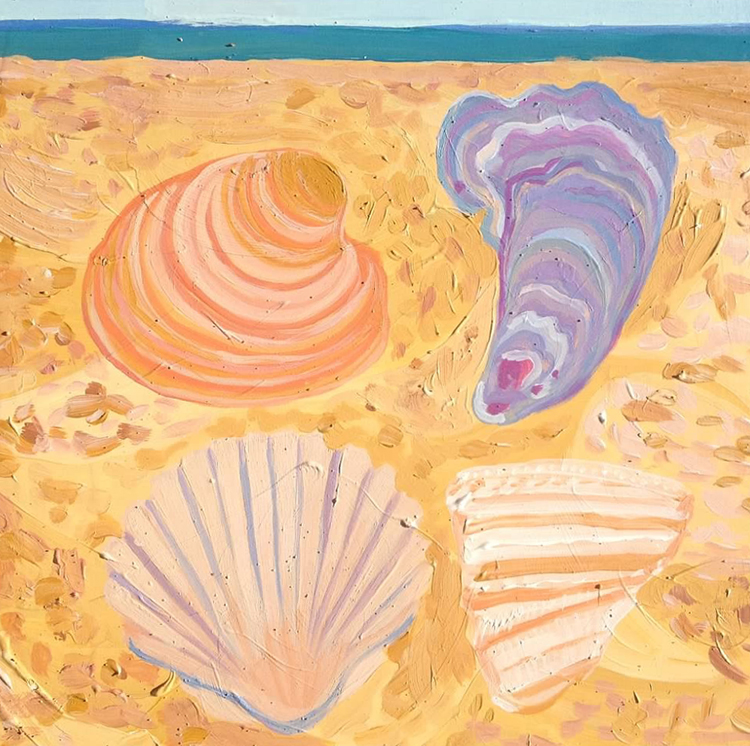 Hatteras Shells, 2013