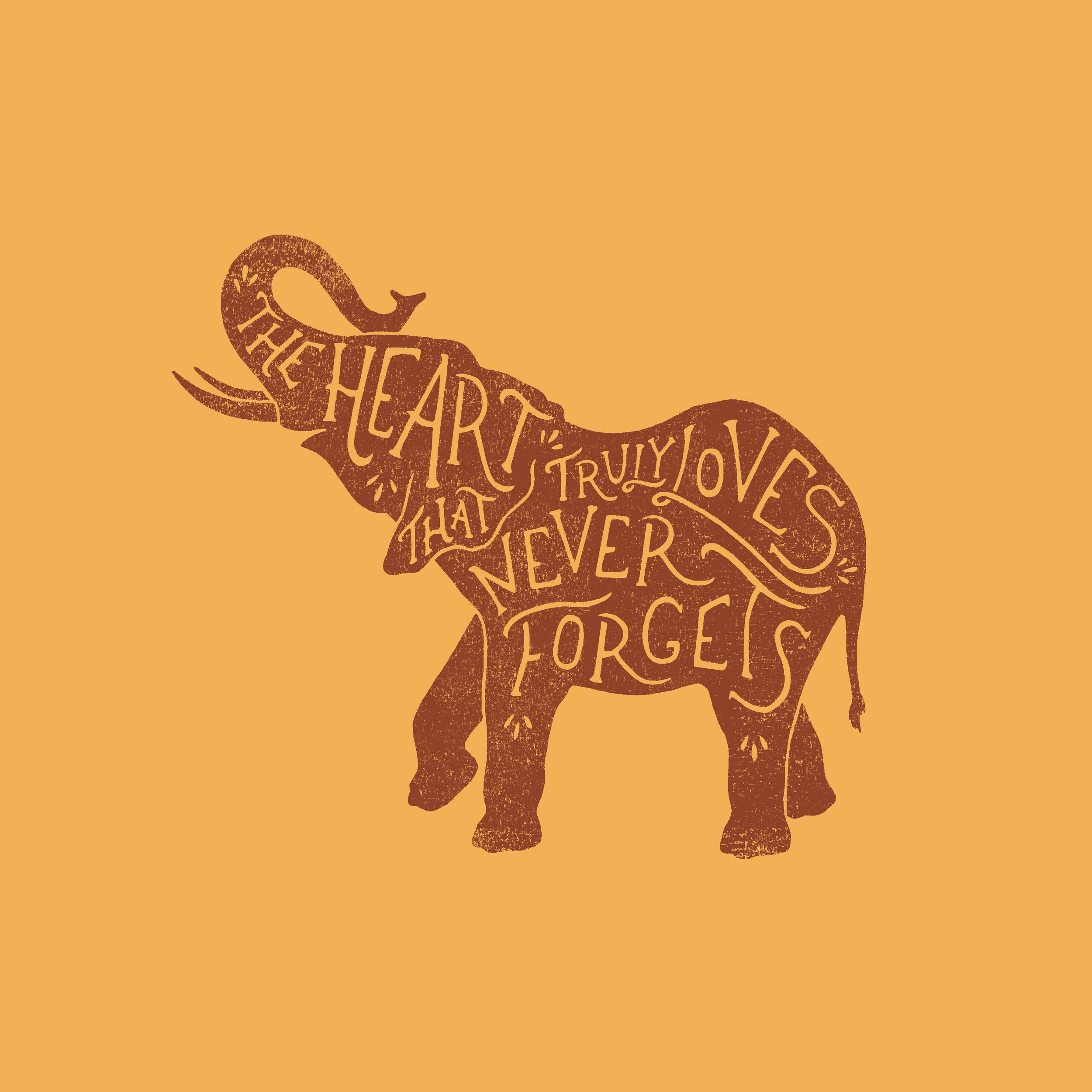 Elephant Wisdom