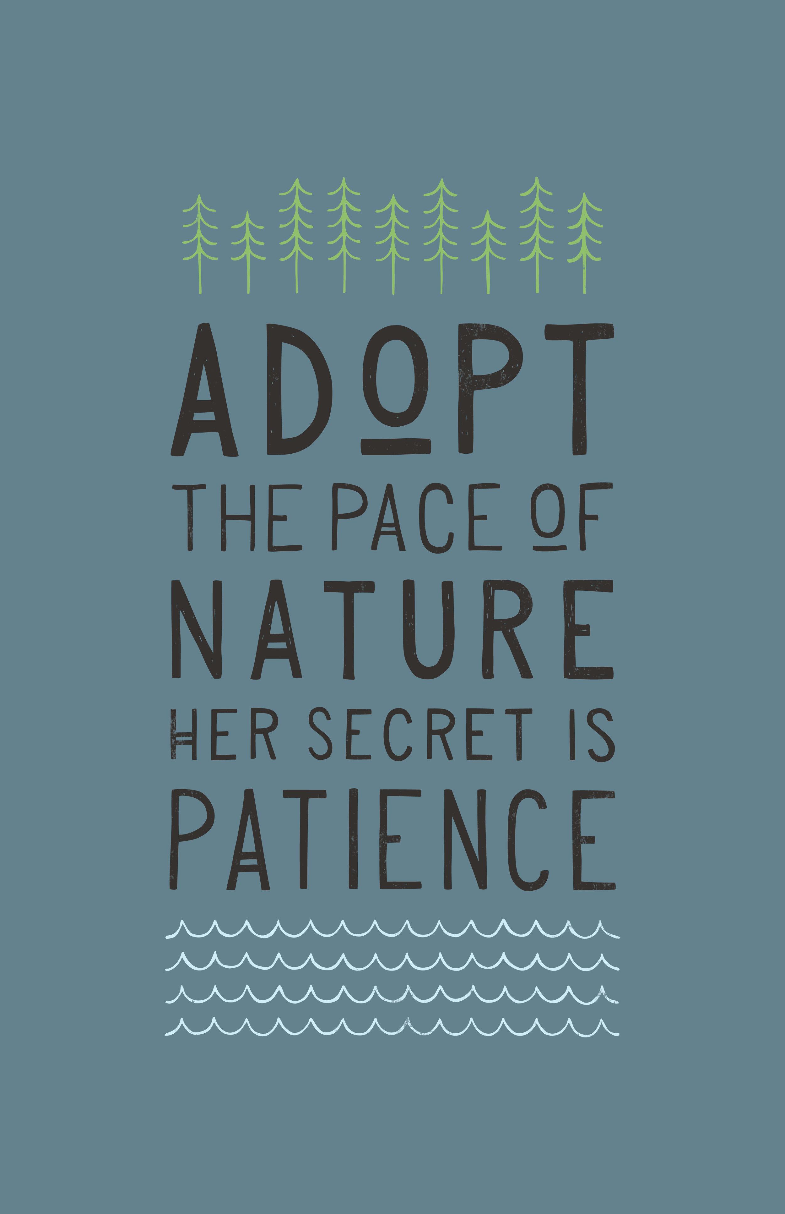 naturePace-01.jpg