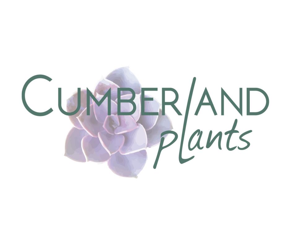 Cumberland Plants.png
