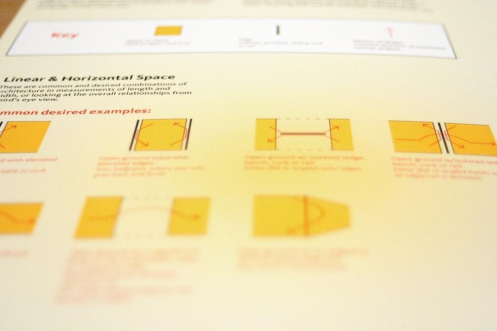 ActinPotential_04.jpg