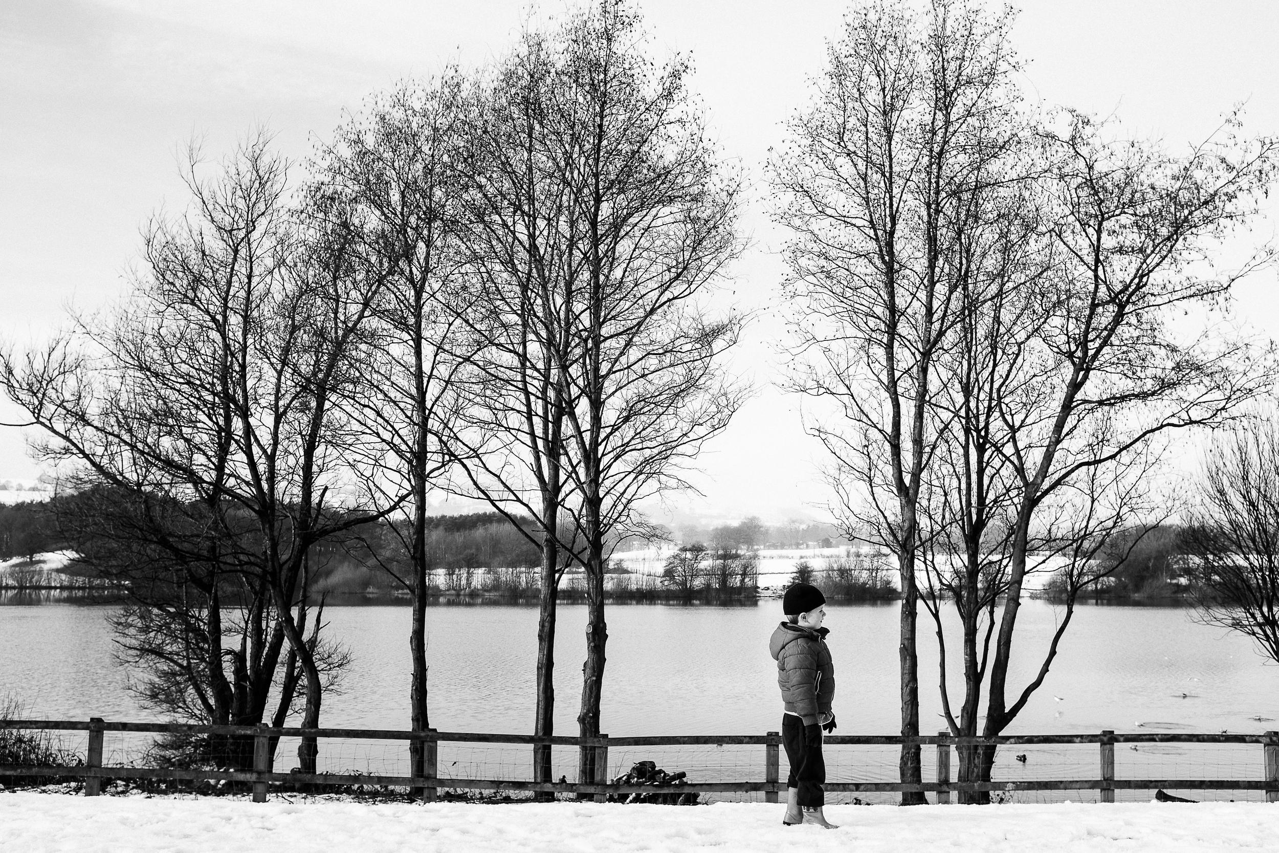 Winter  - Tittesworth Reservoir, Staffordshire - December 2014