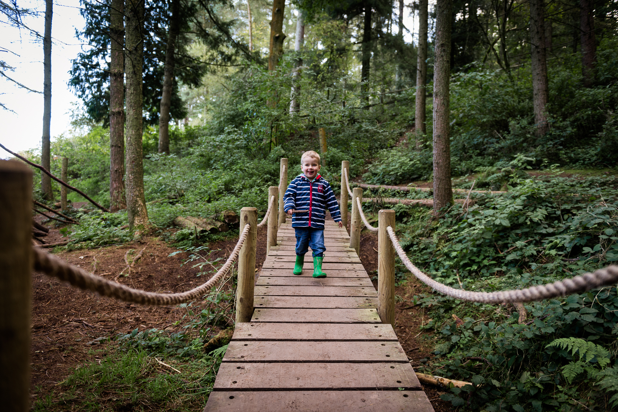 Documentary Family Photography at Clent Hills, Worcestershire Family Lifestyle Photography Woods Outdoors Trees Flying Kite - Jenny Harper-5.jpg