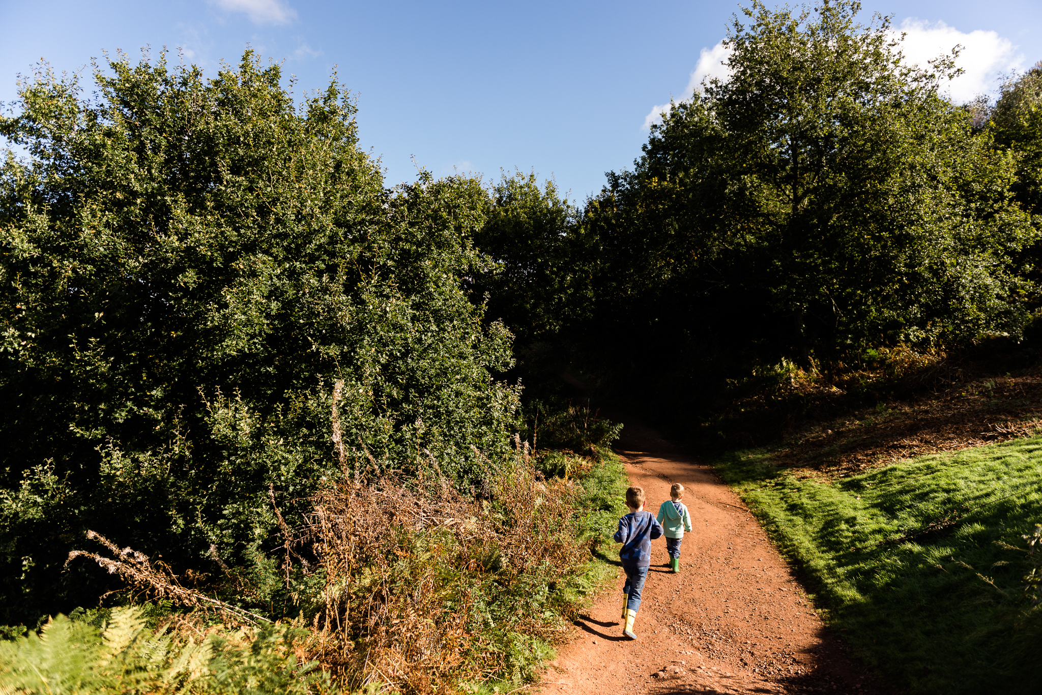 Documentary Family Photography at Clent Hills, Worcestershire Family Lifestyle Photography Woods Outdoors Trees Flying Kite - Jenny Harper-15.jpg
