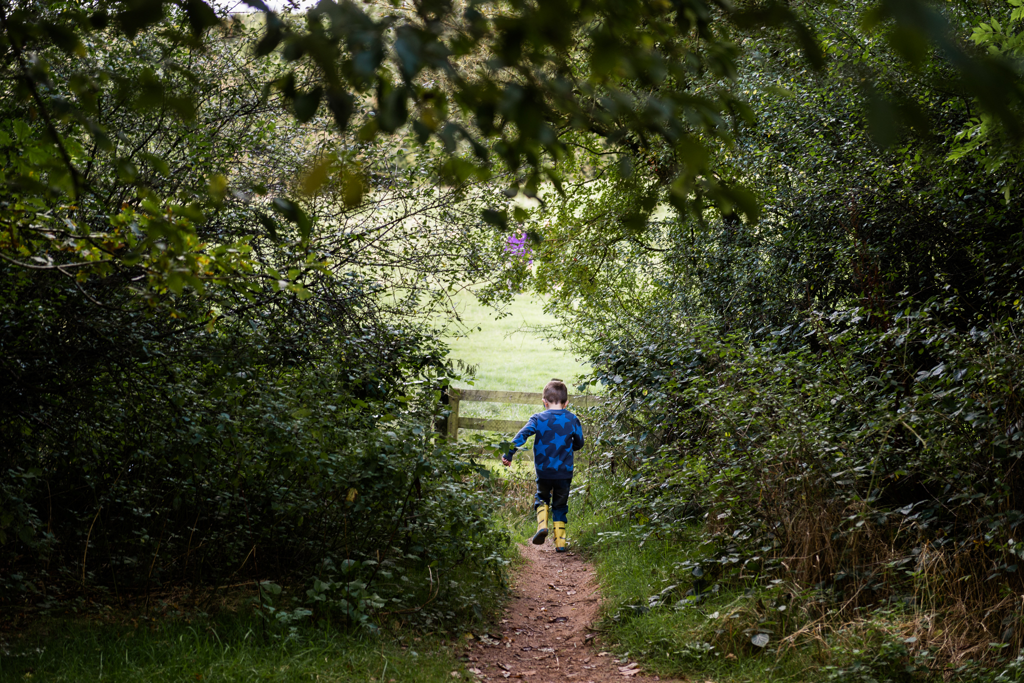 Documentary Family Photography at Clent Hills, Worcestershire Family Lifestyle Photography Woods Outdoors Trees Flying Kite - Jenny Harper-24.jpg