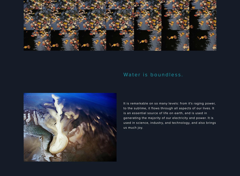 website 2.jpeg.jpg