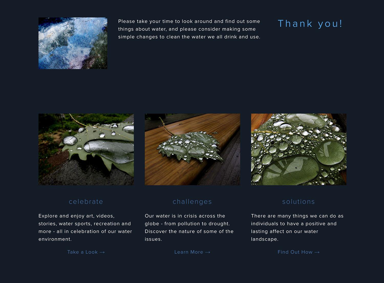 website 6.jpeg.jpg
