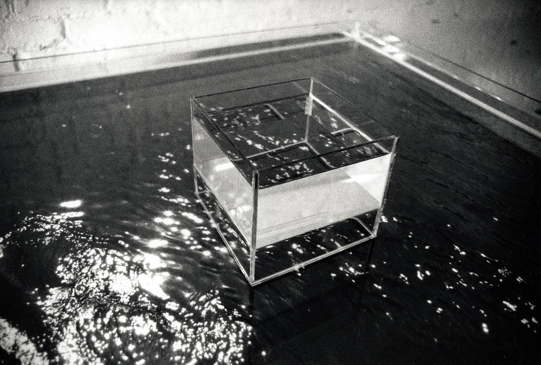 surface reversal 003.jpg
