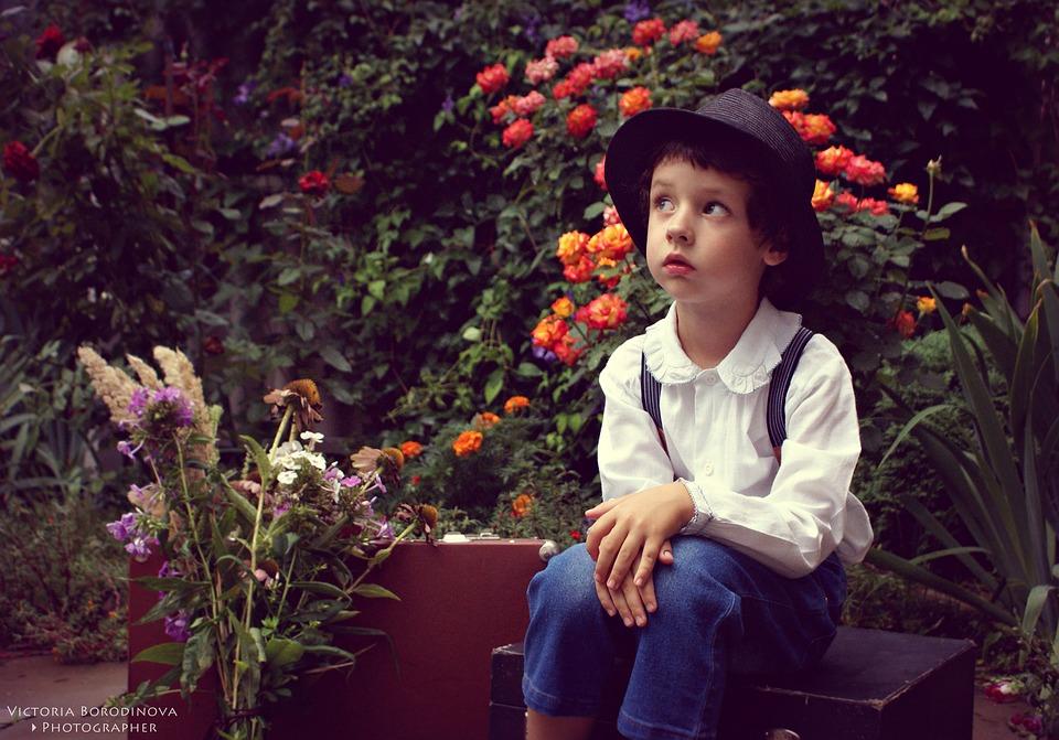 garden-2853394_960_720.jpg