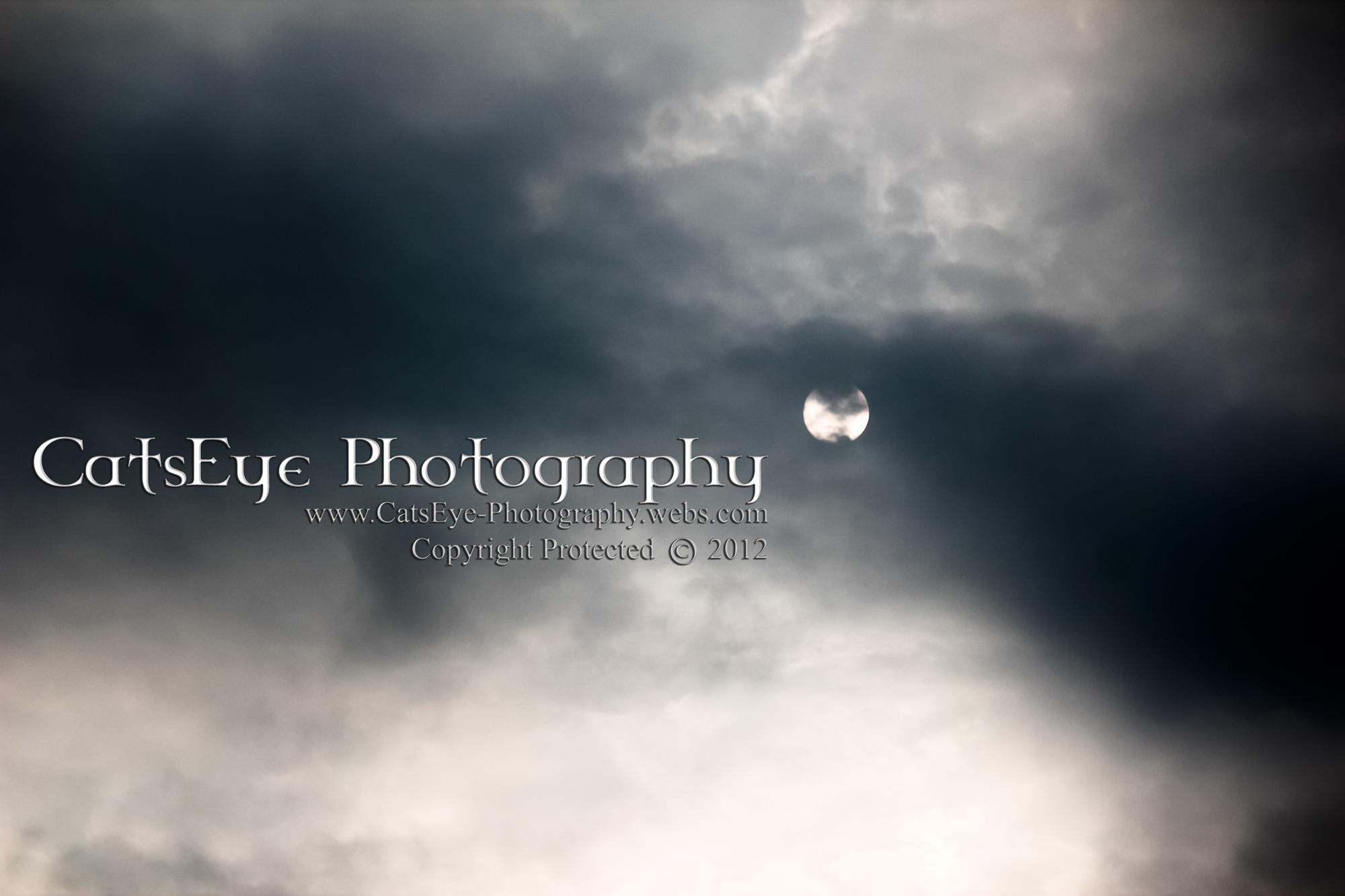 EVOC2012.GVPD.26.jpg
