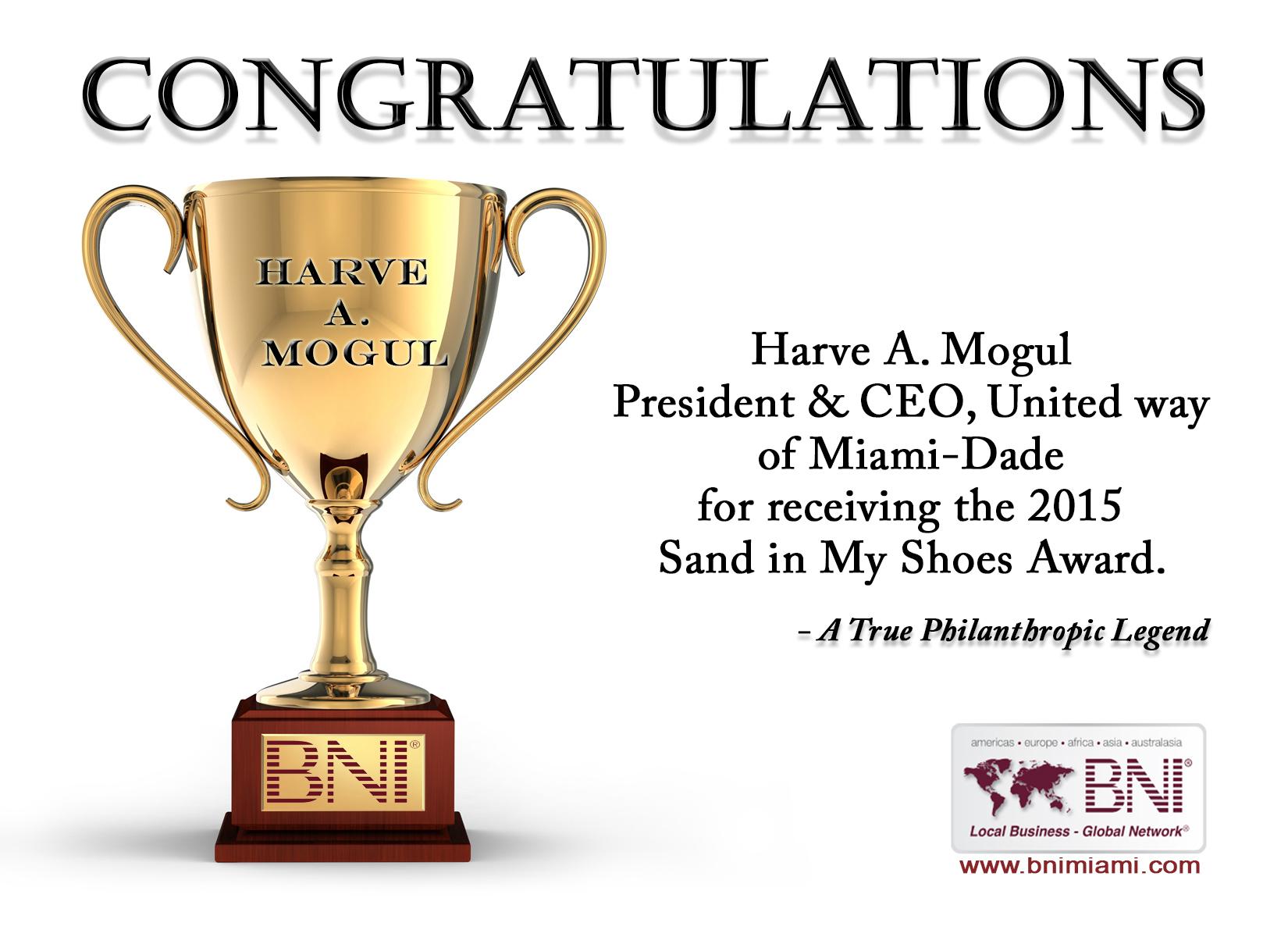 SIMShoes Award2015.jpg