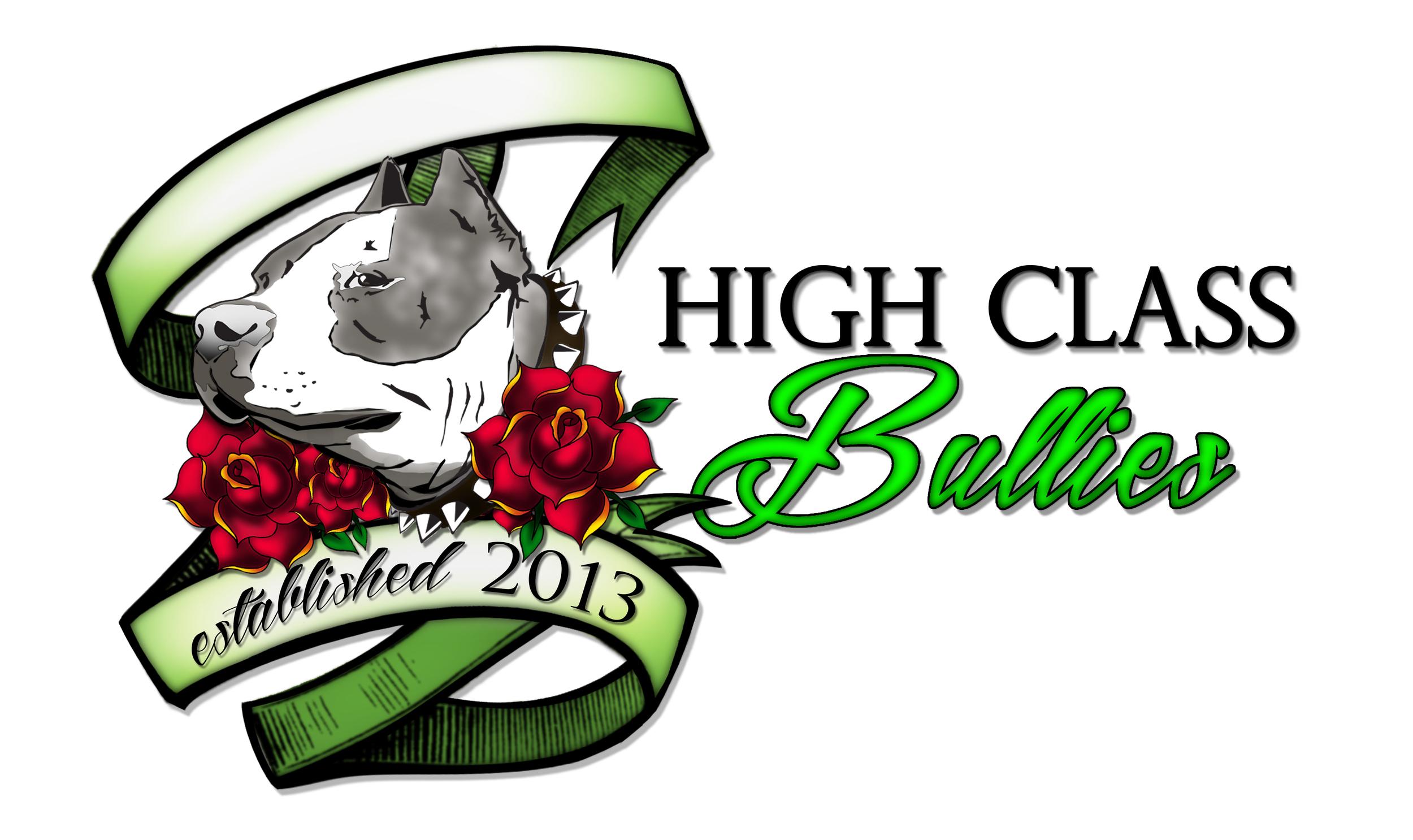 HC Bullies vertical logo.jpg