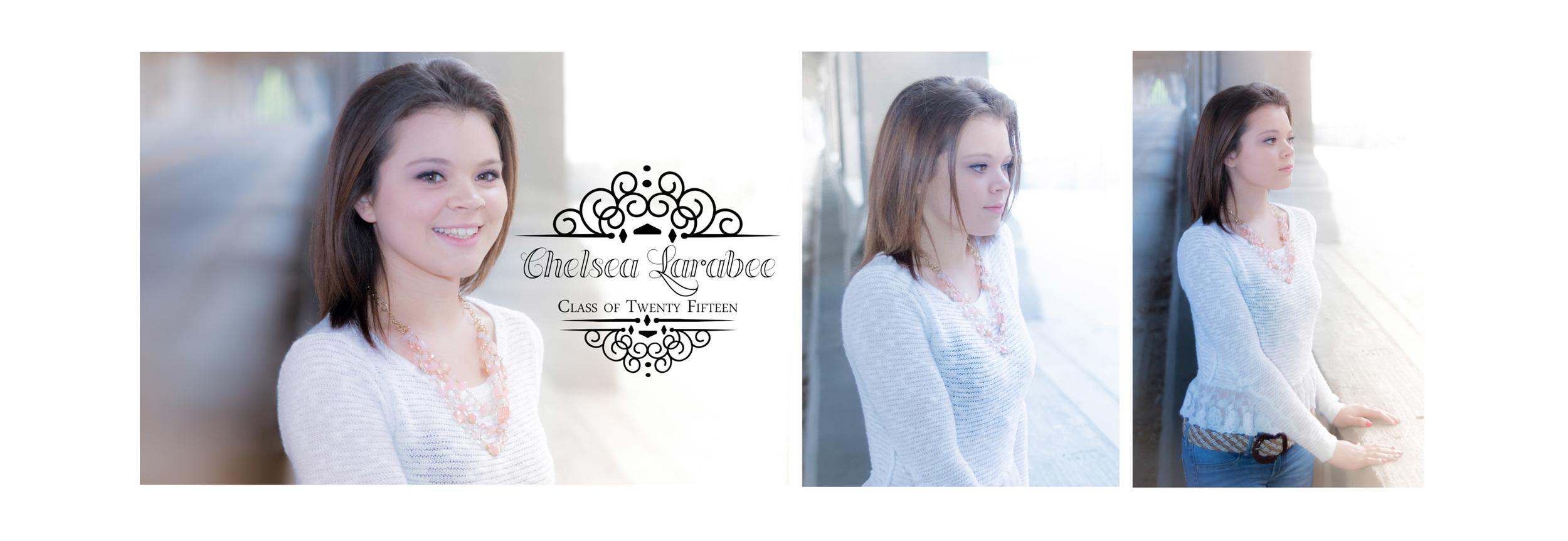 Chelsea Larabee Senior CatsEye Photography 2015 Banner 2.jpg