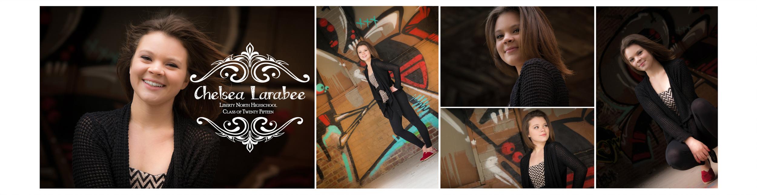 Chelsea Larabee Senior CatsEye Photography 2015 Banner 7.jpg