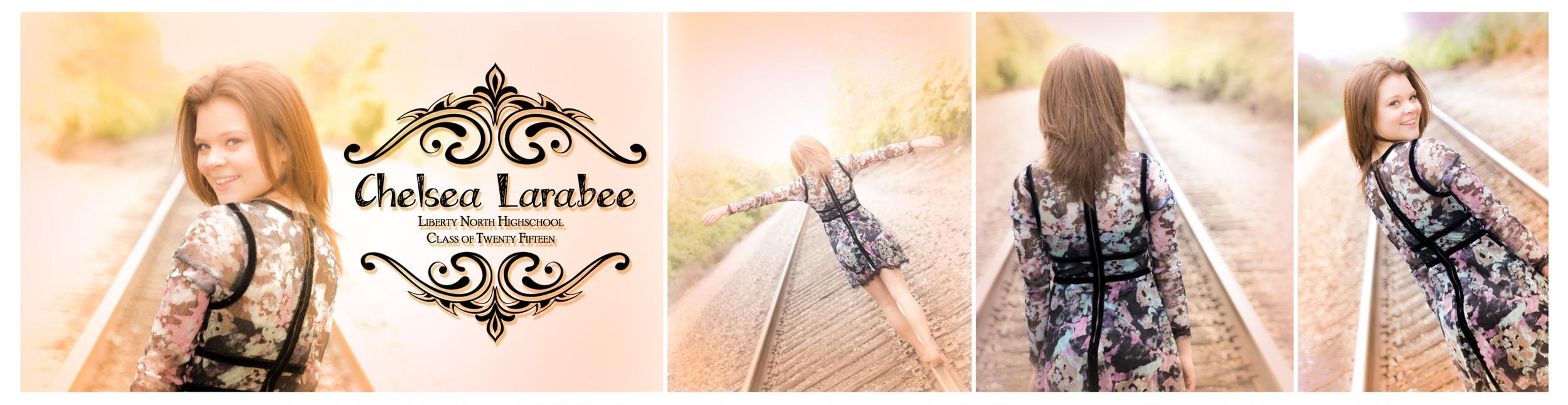 Chelsea Larabee Senior CatsEye Photography 2015 Banner 11.jpg