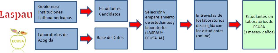 metodologia.png