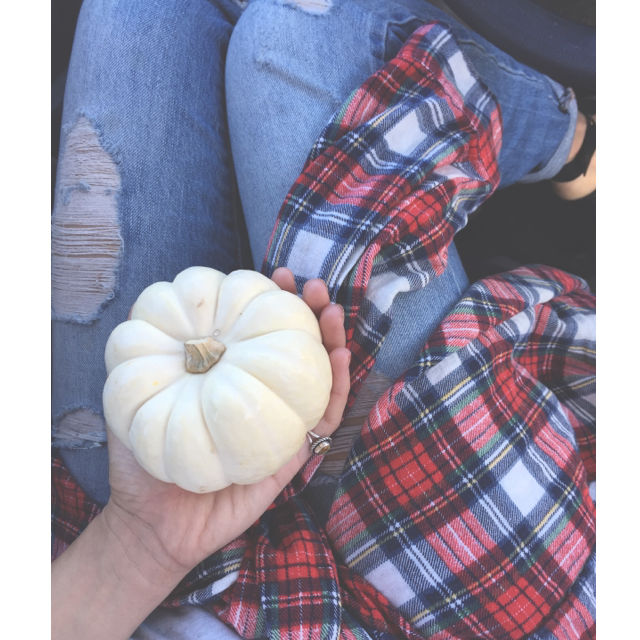 Little baby pumpkins, soon to be gone for another year :( Oh, ya- and vintage plaid!!