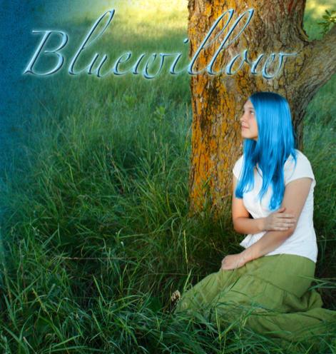 Bluewillow+cover+trim.jpg