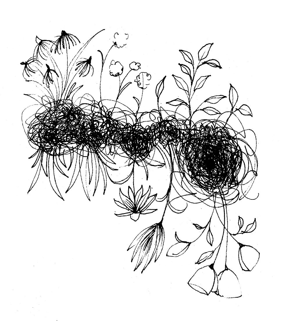 BAC drawn scribble flowers 1.jpg