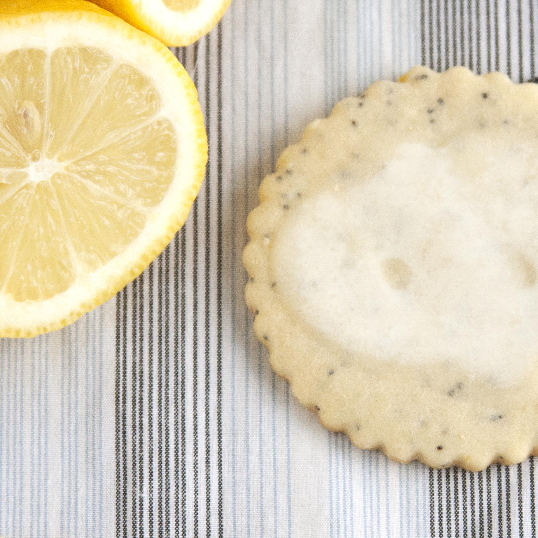 BAC for Kim Lemon Poppyseed 6.jpg