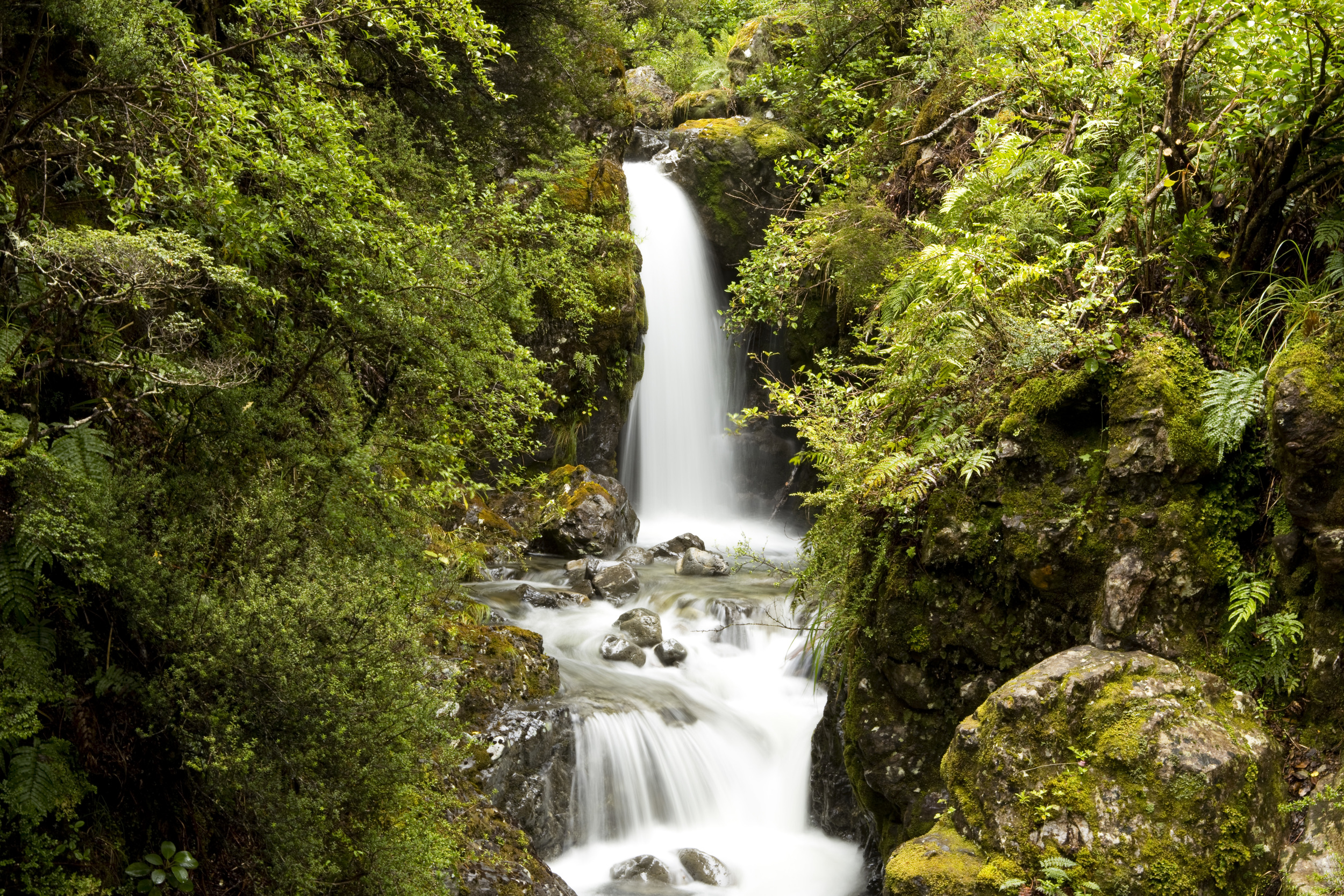 Another waterfall from my travels, near Arthur's Pass, NZ.
