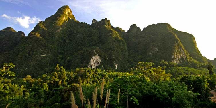 elephant hills 2.jpg
