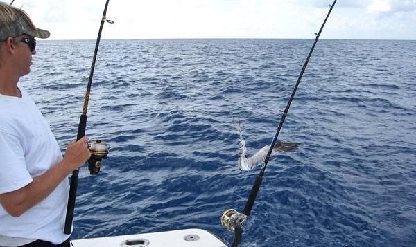 Deep sea fishing from £77.00