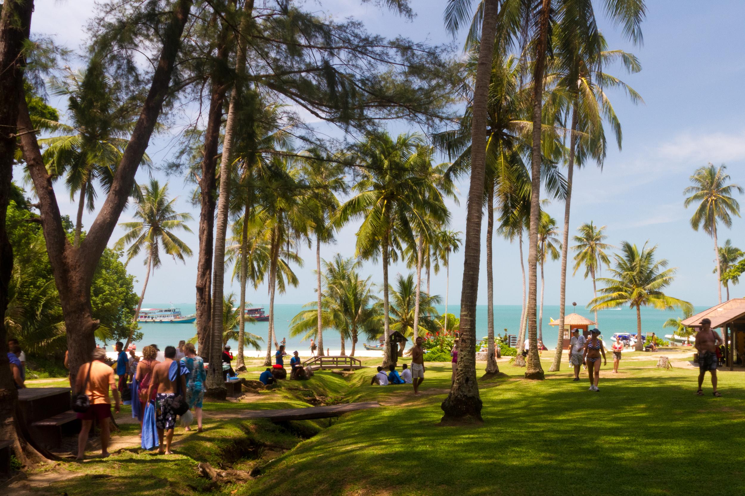 thailand-ko-samui-d.jpg