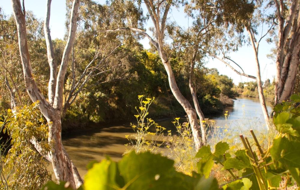 River-Terrace-Inn-Riverview.jpg