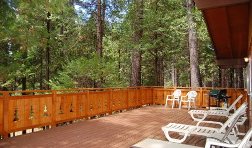 Redwoods 2.jpg