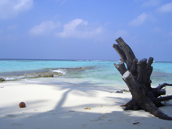 maldives-january-2005-1410571.jpg