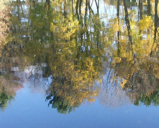 fall-reflections-1-1408085 - connecticut.jpg
