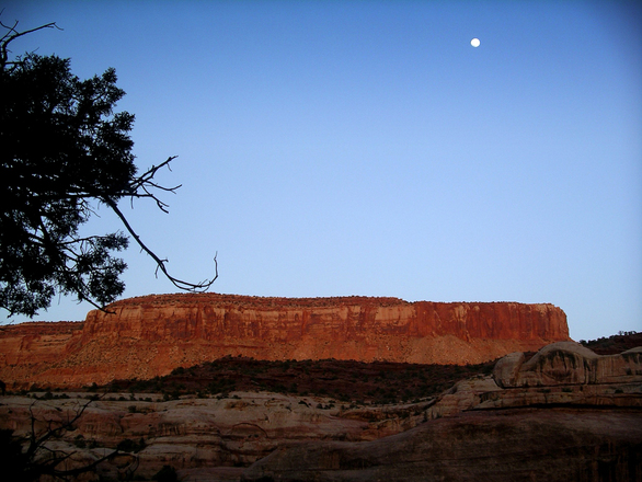 davis-canyon-moonrise-1537384.jpg
