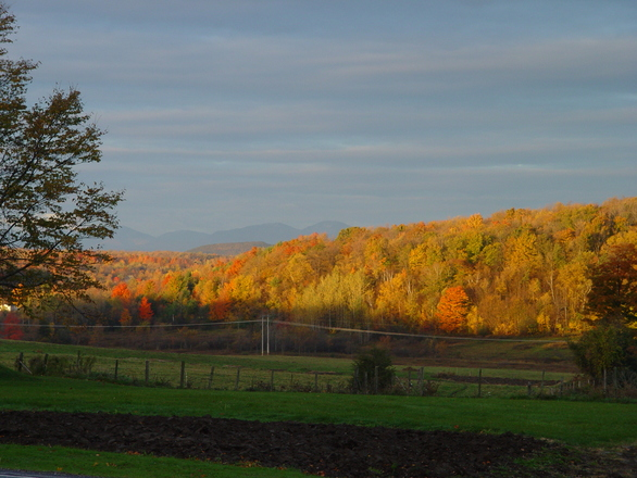 Autumn Morning in Vermont