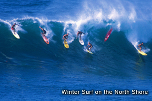 Hawaii- northshoresurf.jpg