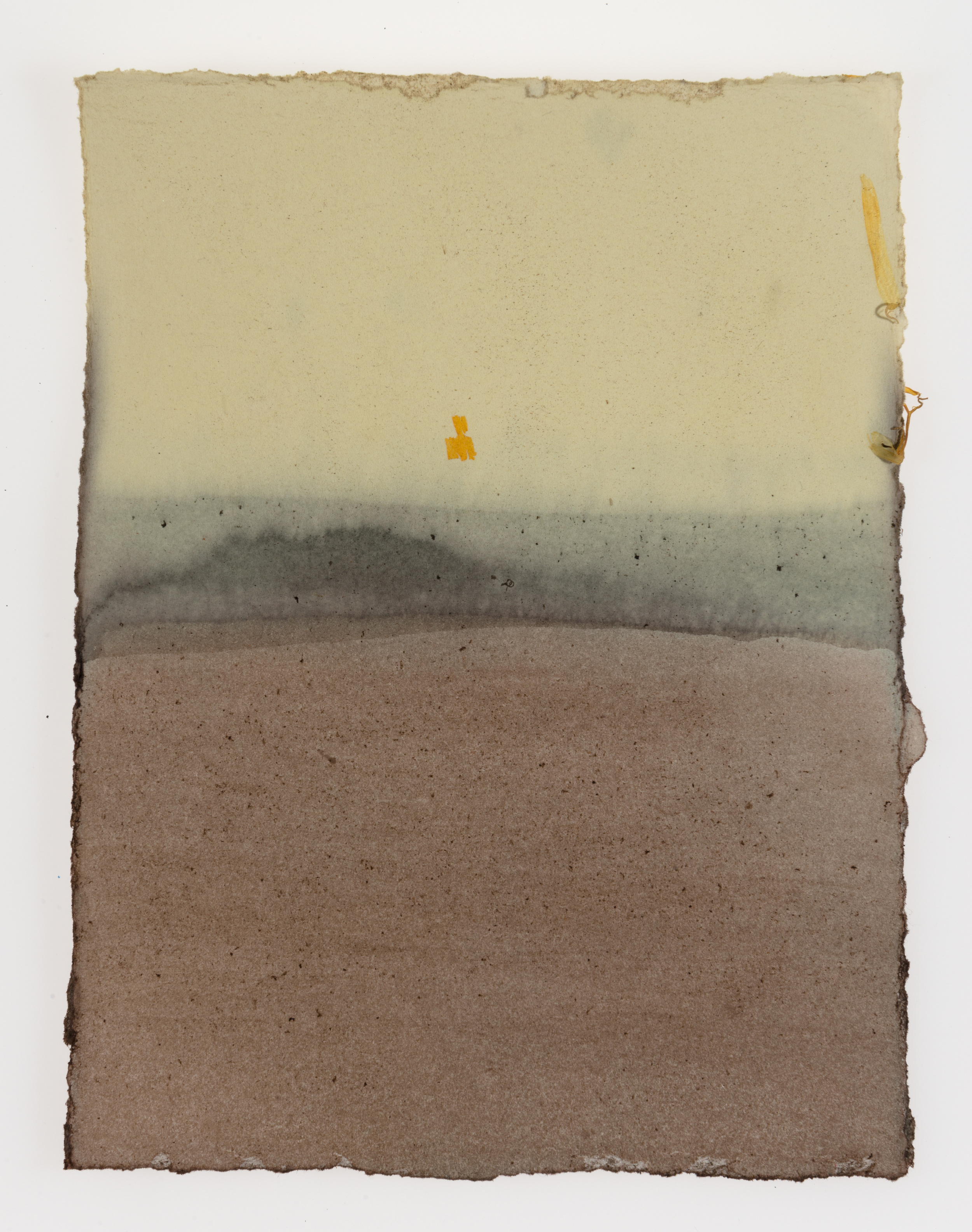 Cornelia White Swann,  Beyond the Horizon , 2015. Marigold, madder tood, and henna on paper, 7 1/2 x 5 3/4 inches. Documented February 2015.
