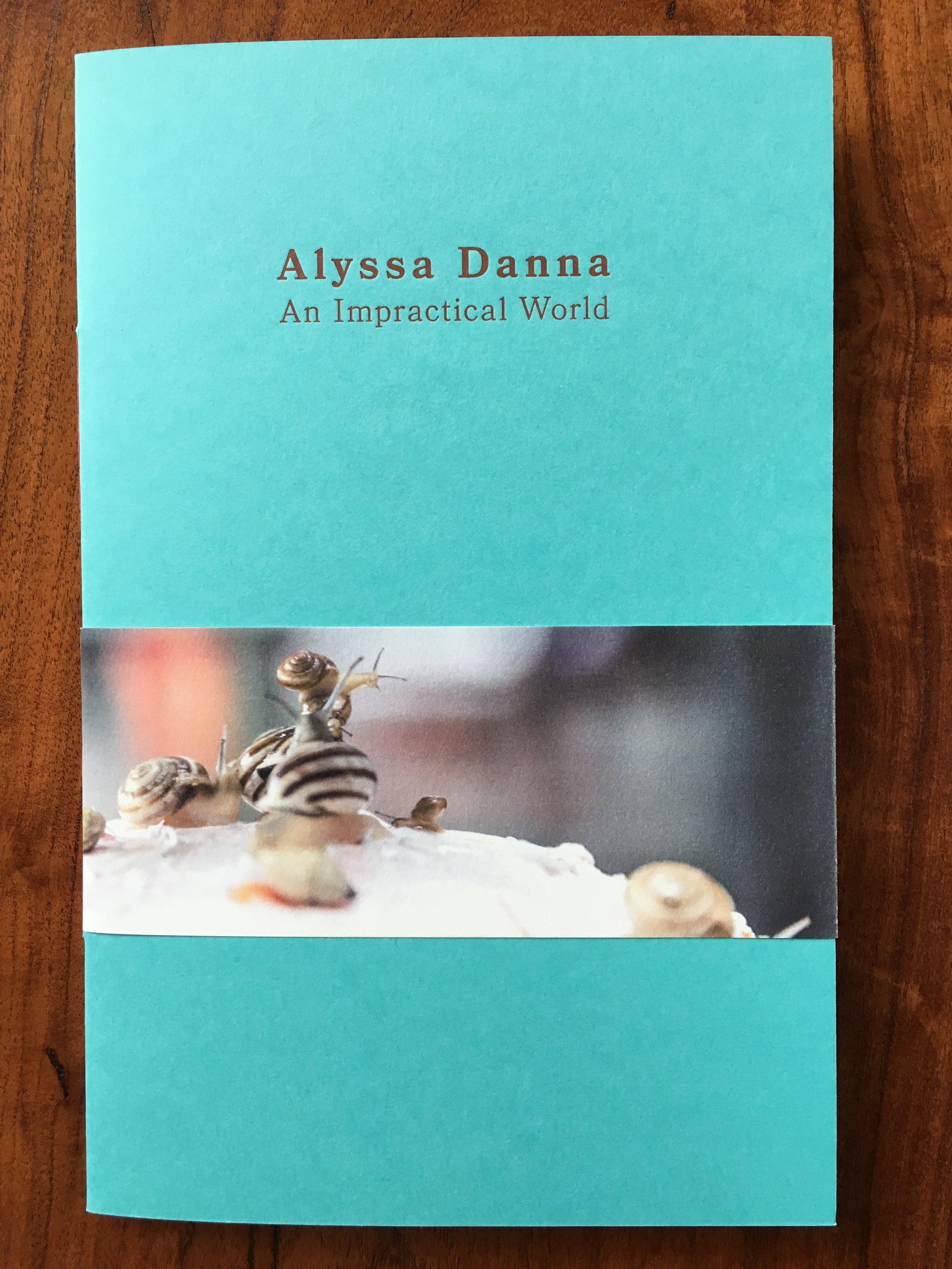 Alyssa Danna  An Impractical world  2017